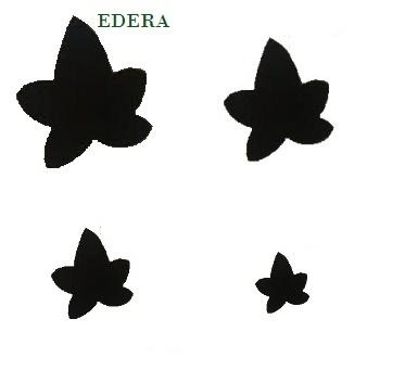 sagome foglie edera