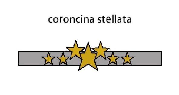 CORONCINA CON LE STELLE PER CARNEVALE